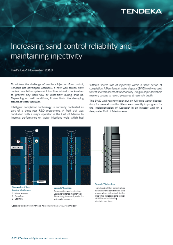 Increasing sand control reliability and maintaining injectivity