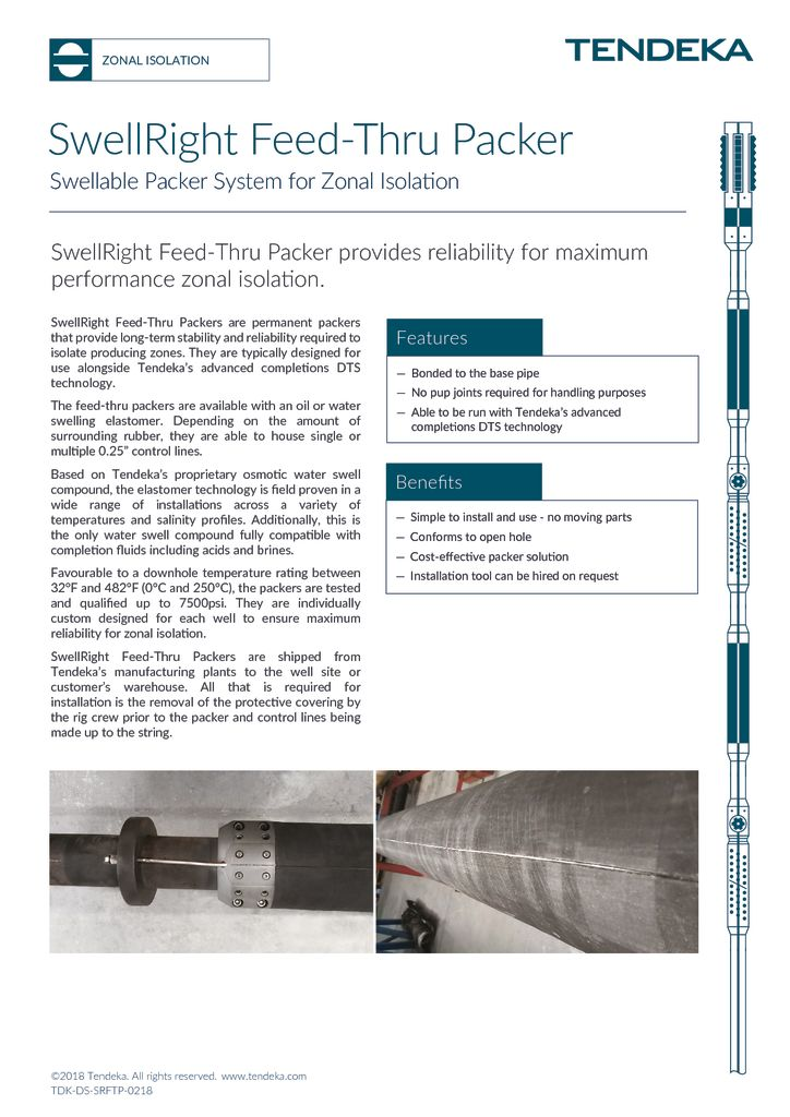 thumbnail of Swellright Feed-thru Packer Datasheet