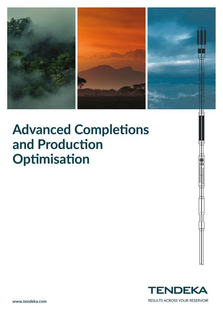 thumbnail of Tendeka_Capability Brochure_2018