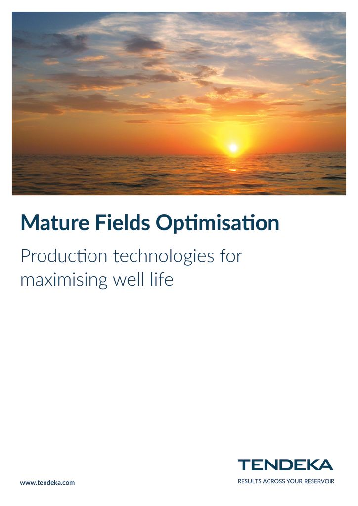 thumbnail of Tendeka_Mature_Fields Solutions 2018