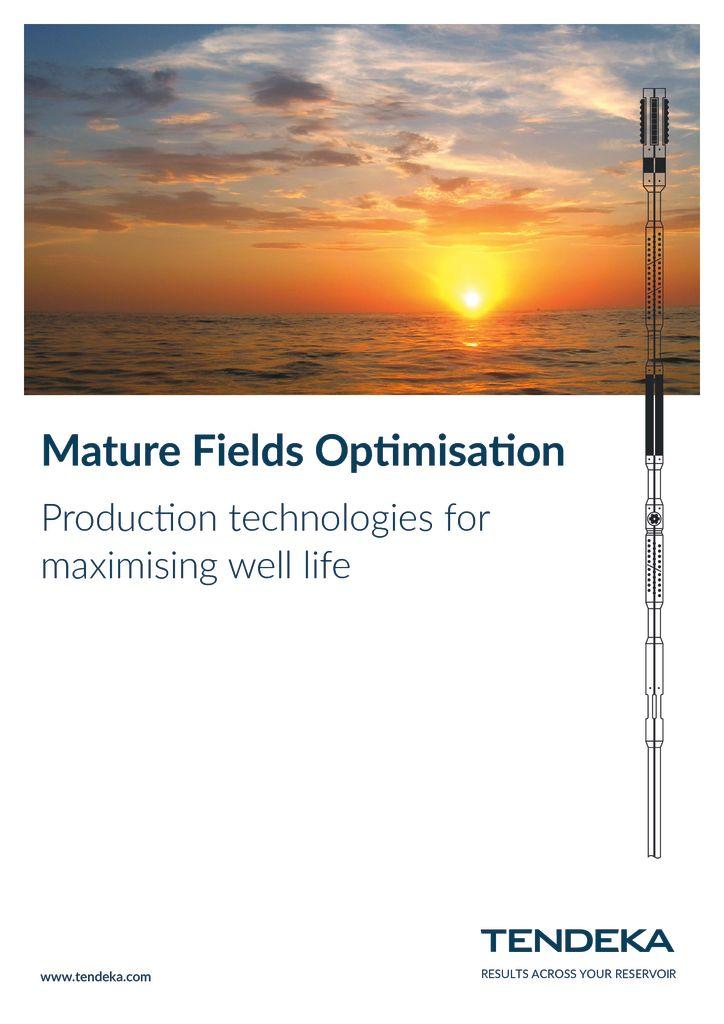 thumbnail of Tendeka_Mature_Fields Solutions 2018