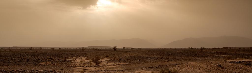 scenescape of desert