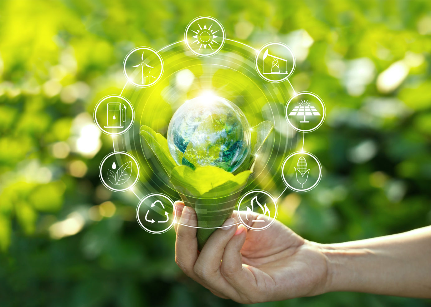 Sustainability in our hands